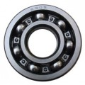 Deep Groove Ball Bearings 6305